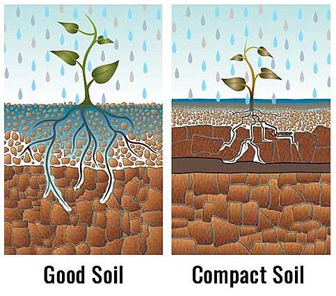 Soil-compaction-differences