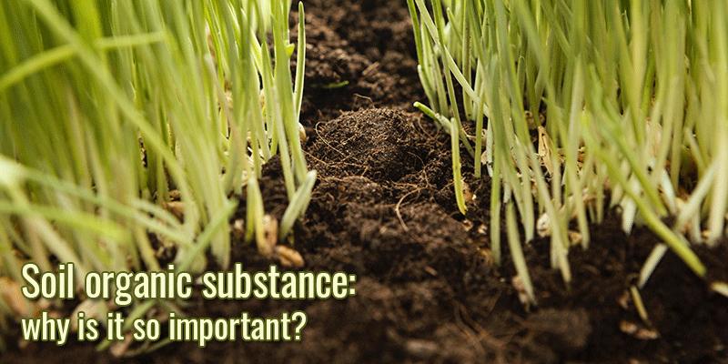 Soil Organic Substance