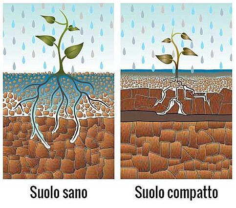 compattazione-del-terreno-differenze