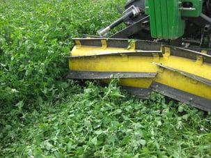 cover-crops-1-roller-crimper.jpg