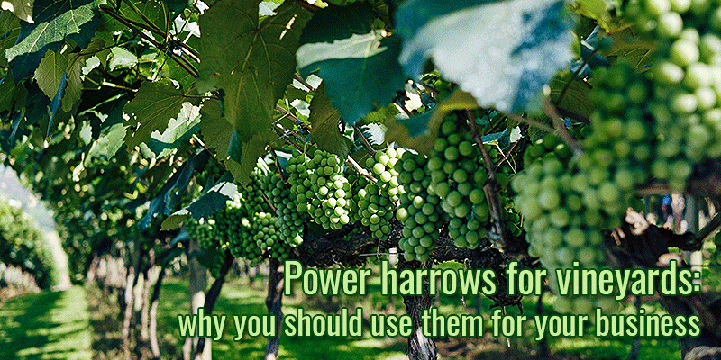 Power harrows for vineyards: why you should use them for your business