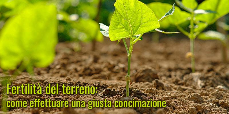Fertilità del terreno: come effettuare una giusta concimazione