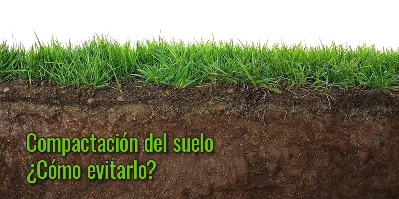 Compactación del terreno: ¿cómo puedes evitarla? ¿cómo solucionarla?