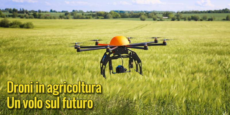 Droni in agricoltura: un volo sul futuro