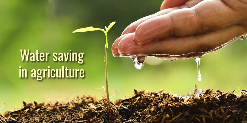 Water saving in agriculture: here's how to limit water waste